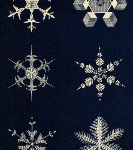 Snowflakes: a Chapter from the Book of Nature Public Domain Review